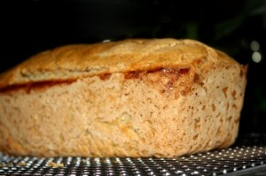 brown rice sour dough yeast free bread