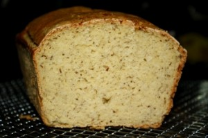 gluten free yeast free brown rice starter bread